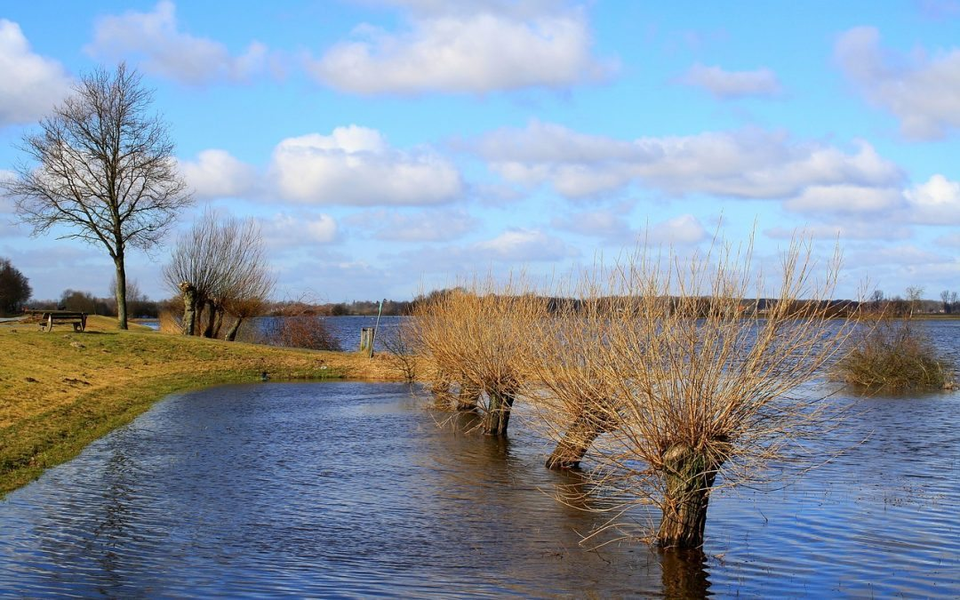 Water Resources: How GIS can Help Overcome New Challenges?